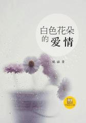 中国好小说:白色花朵的爱情