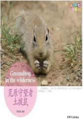 我的野生动物邻居 荒原守望者土拨鼠(试读本)
