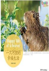 我的野生动物邻居 一只河狸的幸福生活(试读本)