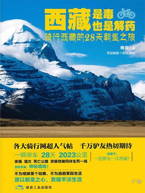 西藏是毒,也是解药:骑行西藏的28天朝圣之旅(一辆单车 28天 2023公里,夜雨 塌方 死亡公路 亲眼目睹同伴生死一线!)