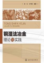 铜湿法冶金理论与实践