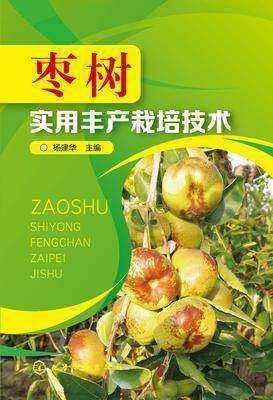 枣树实用丰产栽培技术