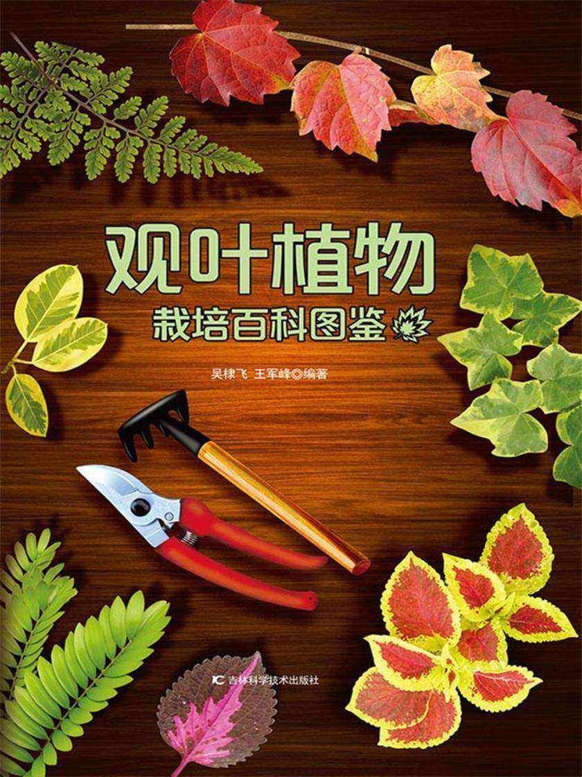 观叶植物栽培百科图鉴