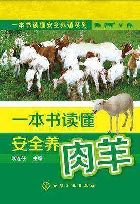 一本书读懂安全养肉羊