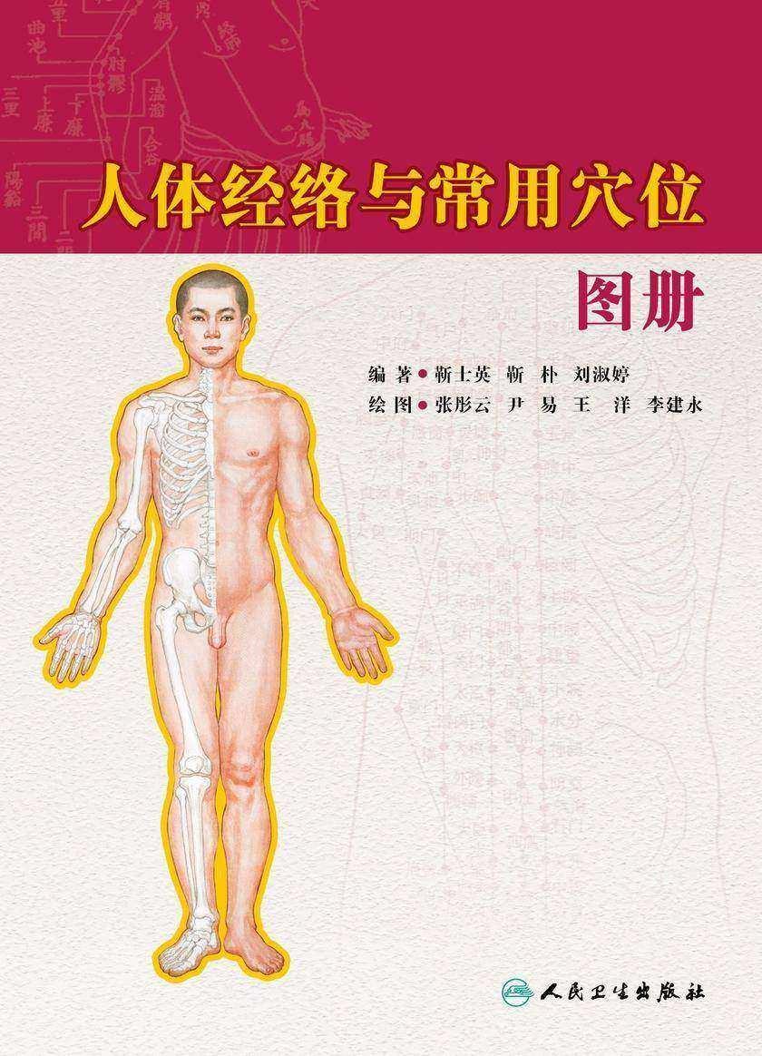 人体经络与常用穴位图册