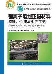 锂离子电池正极材料——原理、性能与生产工艺
