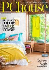 活力荧光色 给家提提神 PChouse家居杂志2017年4月上刊(电子杂志)