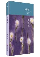 白罂粟 张抗抗短篇小说选(精装)(试读本)