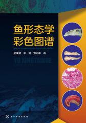 鱼形态学彩色图谱