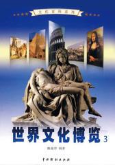 世界文化博览3