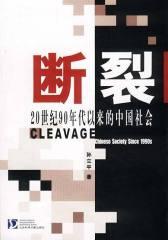 断裂:20世纪90年代以来的中国社会(试读本)