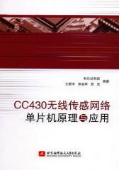 CC430无线传感网络单片机原理与应用(试读本)