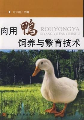 肉用鸭饲养与繁育技术
