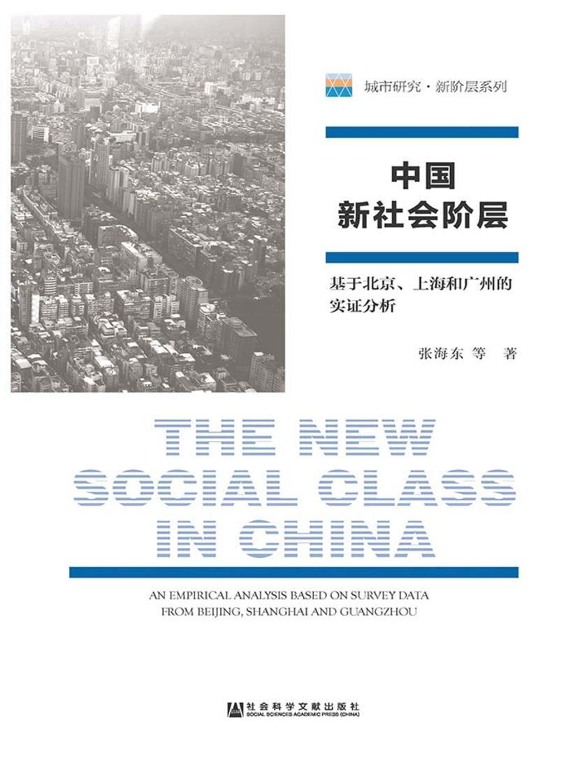 中国新社会阶层:基于北京、上海和广州的实证分析