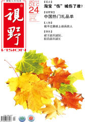 视野 月刊 2011年24期(电子杂志)(仅适用PC阅读)
