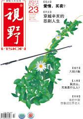 视野 月刊 2011年23期(电子杂志)(仅适用PC阅读)