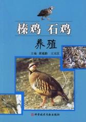 榛鸡石鸡养殖