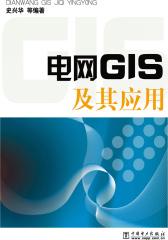 电网GIS及其应用