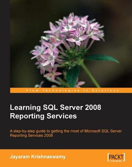 Learning SQL Server 2008 Reporting Services