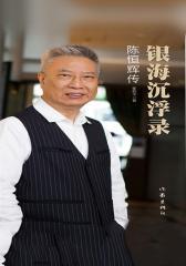 银海沉浮录:陈恒辉传