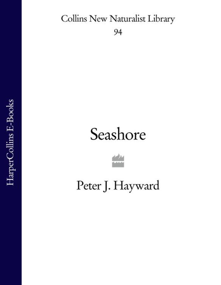 Seashore (Collins New Naturalist Library, Book 94)