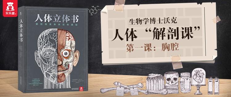 人体立体书:解剖探索身体运转奥秘